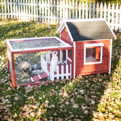 Hector The White Picket Fence Rabbit Hutch Color: Auburn