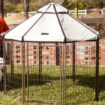 Advantek Halpern Pet Gazebo Color: Beach Sand