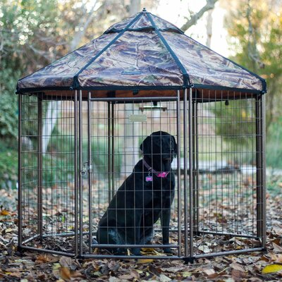 Advantek Select Pet Gazebo Color: Dark Forest