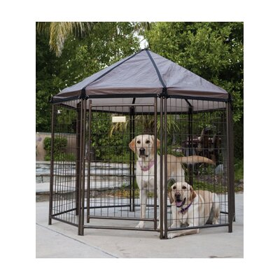 http://common1.csnimages.com/lf/49/hash/11328/5398830/1/Advantek-Pet-Gazebo.jpg