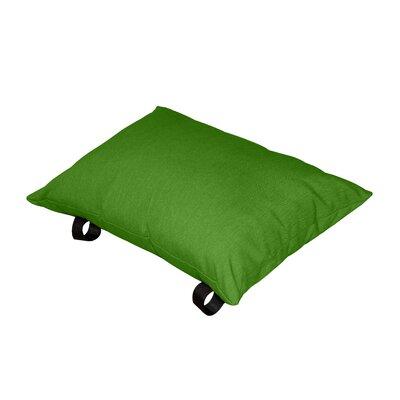 Throw Pillow Color: Green Apple