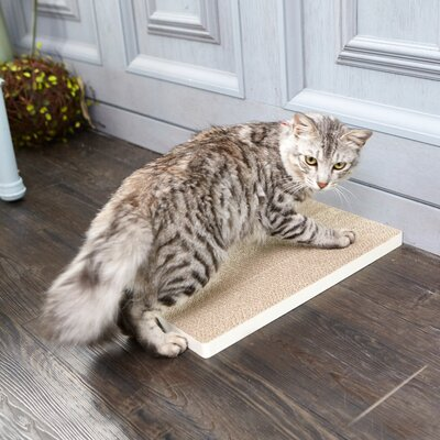 Eco Friendly Scratching Board Color: Aspen White