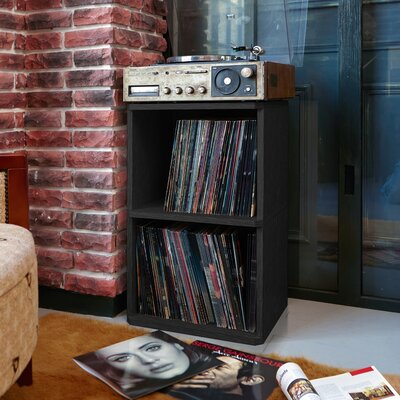 Bellwood Vinyl Record Storage Cube Unit Bookcase Finish: Black