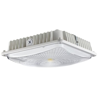 Flush Mount Finish: White, Bulb Color Temperature: 5000