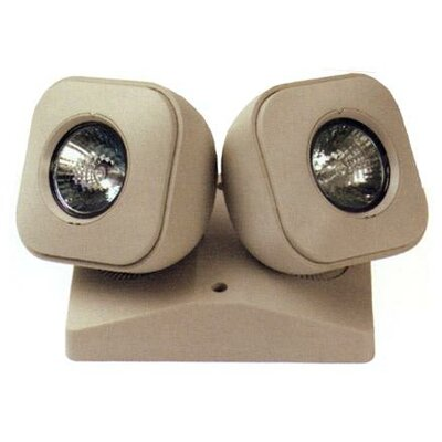 Dual MR-16 Head Remote Emergency Light