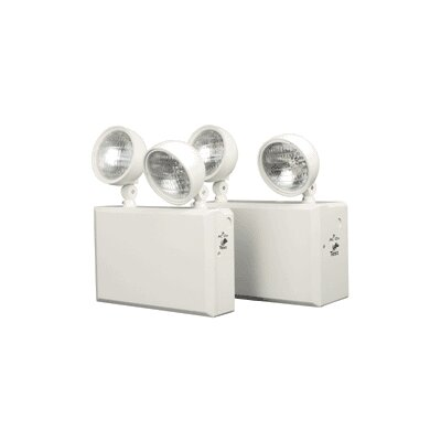 100W 6V Heavy Duty Emergency Lighting Unit with Remote Capacity