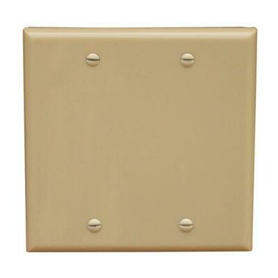 2 Gang Blank Lexan Wall Plates in Ivory (Set of 5)
