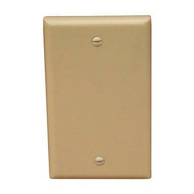 1 Gang Midsize Blank Lexan Wall Plates in Ivory