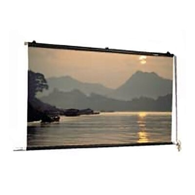 Motorized Scenic Roller Matte White 30 H x 30 W Manual Projection Screen Size: Square 28 x 28