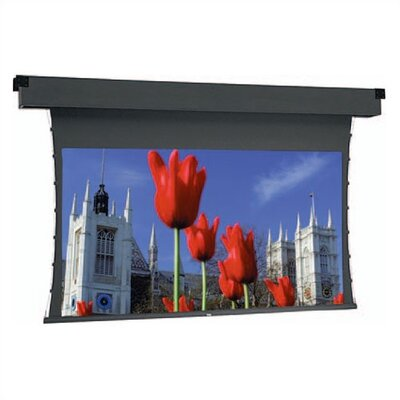 Dual Masking Electrol Grey Motorized Electric Projection Screen Viewing Area: 60 H x 80 W