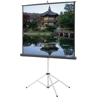 Carpeted Picture King Matte White 92 Diagonal Portable Projection Screen