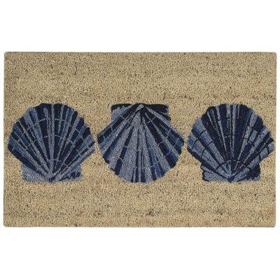 Greetings Trio Shells Blue Doormat Rug Size: 2 x 3