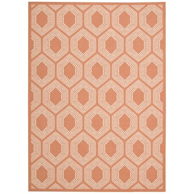 Sun n Shade Orange Indoor/Outdoor Area Rug Rug Size: Rectangle 53 x 75