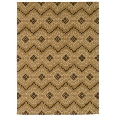 Color Motion Kurta Ember Brown Area Rug Rug Size: Rectangle 5 x 7
