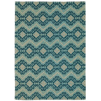 Color Motion Kurta Ember Prussian Area Rug Rug Size: 5 x 7