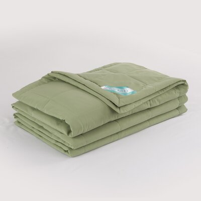 Peachy Down Alternative Blanket Size: King, Color: Sage
