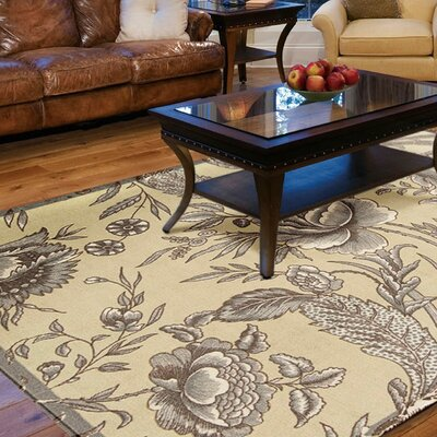 Artisinal Delight Fanciful Ironstone/Beige Area Rug Rug Size: Rectangle 4 x 6