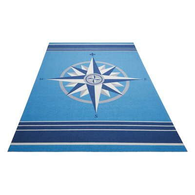 Sun n Shade Blue Indoor/Outdoor Area Rug Rug Size: Rectangle 53 x 75
