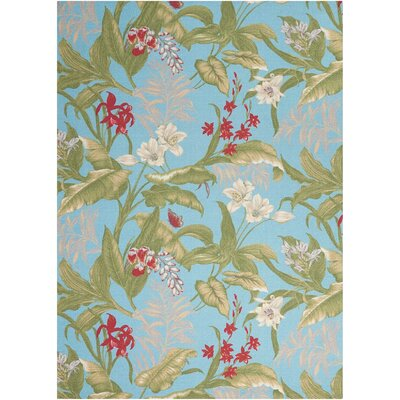 Sun n Shade Aqua Indoor/Outdoor Area Rug Rug Size: 79 x 1010