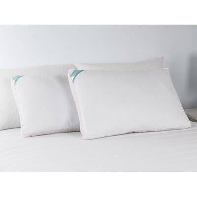 Peachy� Down Alternative Standard Pillow