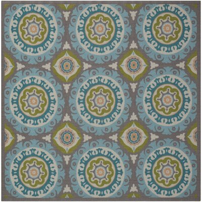 Sun n Shade Solar Flair Indoor/Outdoor Area Rug Rug Size: Square 66 x 66