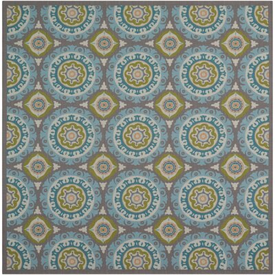 Sun n Shade Solar Flair Indoor/Outdoor Area Rug Rug Size: Square 53 x 53