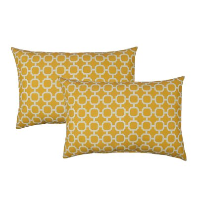 Hockley Outdoor Boudoir Pillow Color: Yellow