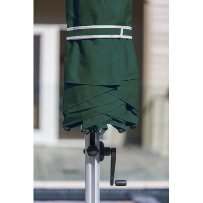 11 Aurora Cantilever Umbrella Color: Forest Green