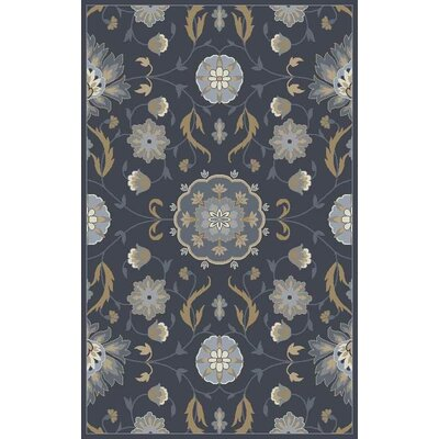 Polen Hand-Tufted Dark Gray Area Rug Rug Size: 5 x 8