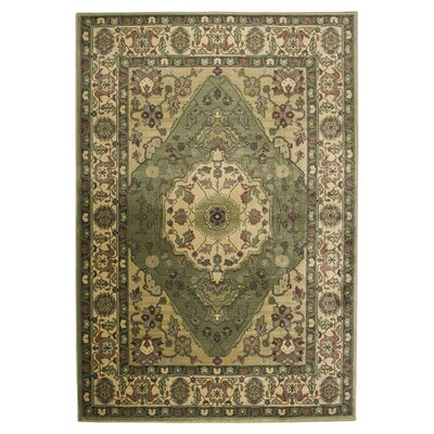Sorrento Green Area Rug Rug Size: Rectangle 18 x 26