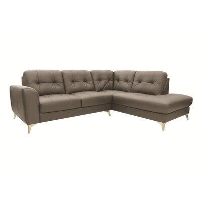 Abhay Sectional Upholstery: Light Gray