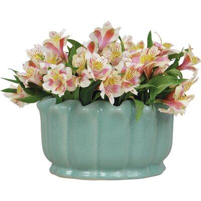 Jacqueline Porcelain Pot Planter ACBS-108-01