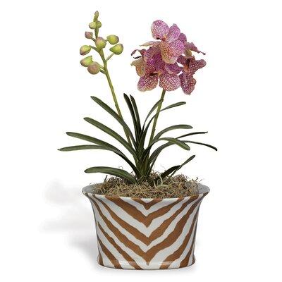 Kenya Oval Pot Planter ACBS-111-07