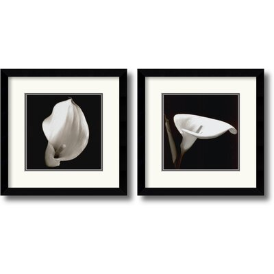 'Calla 3' 2 Piece Framed Photographic Print Set