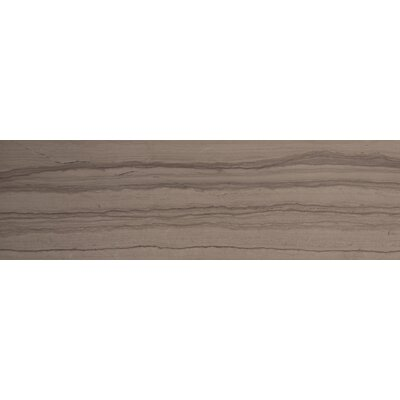 Metro 6 x 24 Marble Field Tile in Vein Cut Honed Taupe
