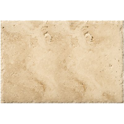 Travertine 8 x 16 Field Tile in Chiseled Umbia Savera