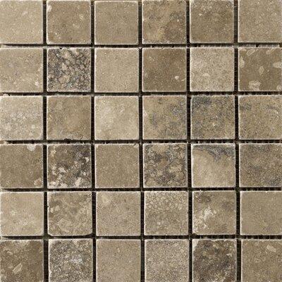 Travertine 2 x 2/12 x 12 Vino Mosaic Tile in Noce