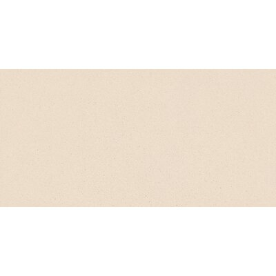 Direction 12 x 24 Porcelain Field Tile in Coordinate Matte