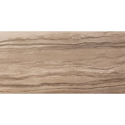 Motion 12 x 24 Porcelain Field Tile in Gesture