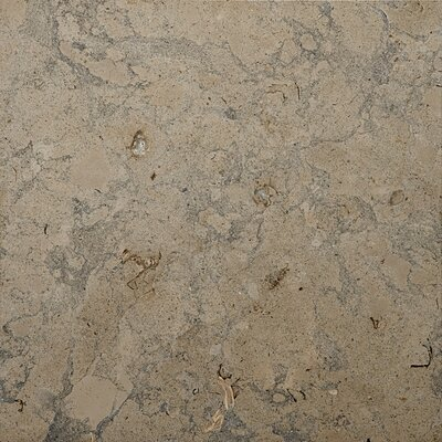 Limestone 18 x 18 Field Tile in Lagos Azul