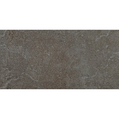 Bombay 12 x 24 Porcelain Field Tile in Salsette