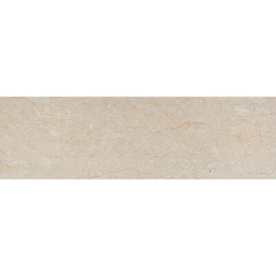 Park Avenue 8 x 32 Porcelain Field Tile in Marfil Matte