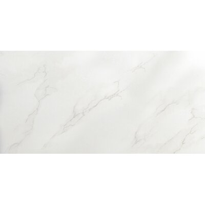 Paladino 3 x 6 Porcelain Subway Tile in Albanella Matte