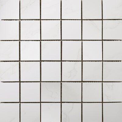 Paladino 2 x 2/12 x 12 Porcelain Mosaic Tile in Albanella Matte