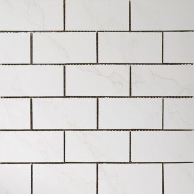 Paladino 2 x 4 Porcelain Mosaic Tile in Albanella