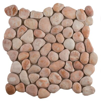 Random Sized Marble Pebble Tile in Venetian