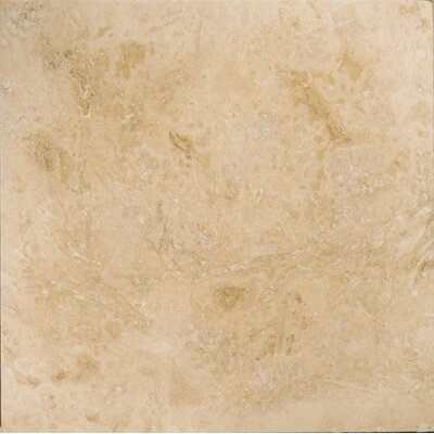 Travertine 24 x 24 Filled and Honed Field Tile in Beige
