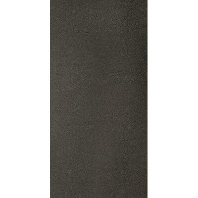 Granite 12 x 24 Field Tile in Absolute Black Flamed