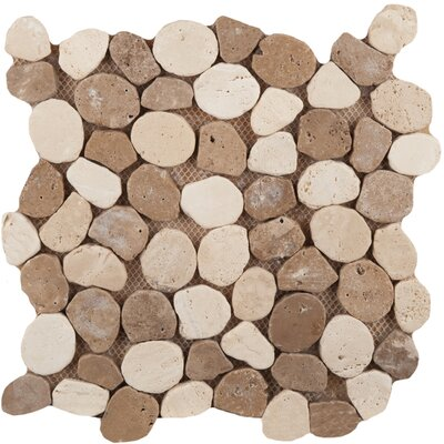 Travertine 12 x 12 Pebble Mosaic in Beige/Mocha