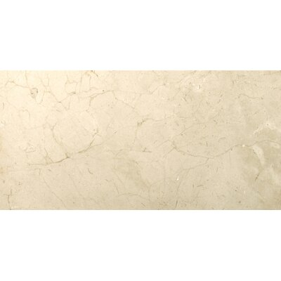 Marble 12 x 24 Field Tile in Marfil Plus Honed